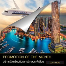 275256016175-Promotion-of-the-month