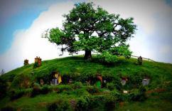 hobbiton14
