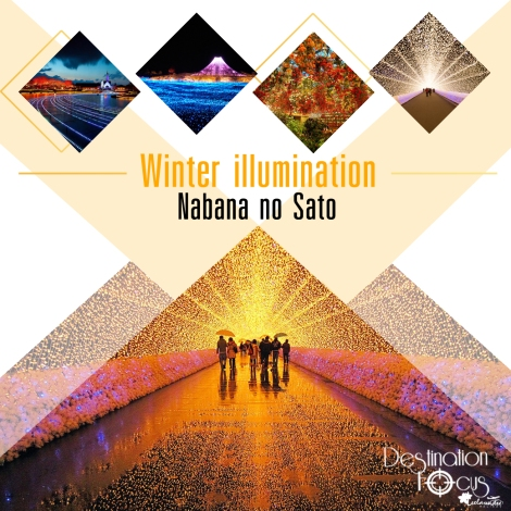 banner-line-nabana_1