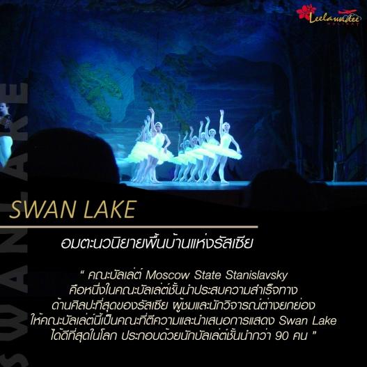 swanlake3